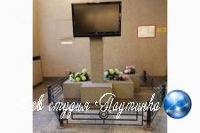 У петербургских чиновников обнаружили «могилу» телевизора