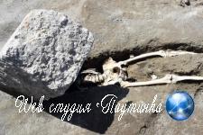 В сети посмеялись над нелепой смертью тысячелетней давности 5