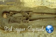«Первого в мире киборга» из старинной могилы подняли на смех